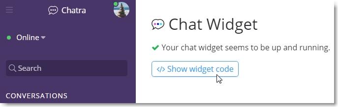 select show widget code
