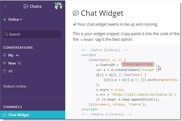 view the chat widget code